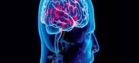 هر آنچه باید در مورد هورمون کورتیزول بدانید